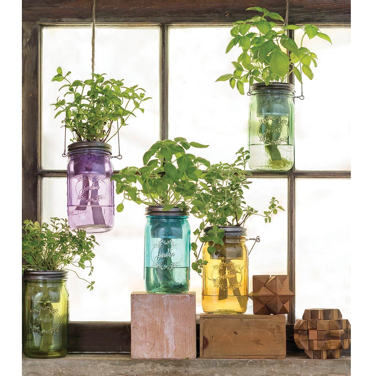 mason jars hydroponic system