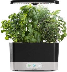 indoor herb gardens aerogarden black harvest indoor hydroponic