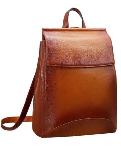 Flap Top Backpack Women's
