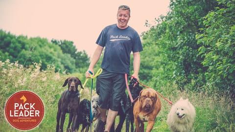 Dog Walking Course Udemy