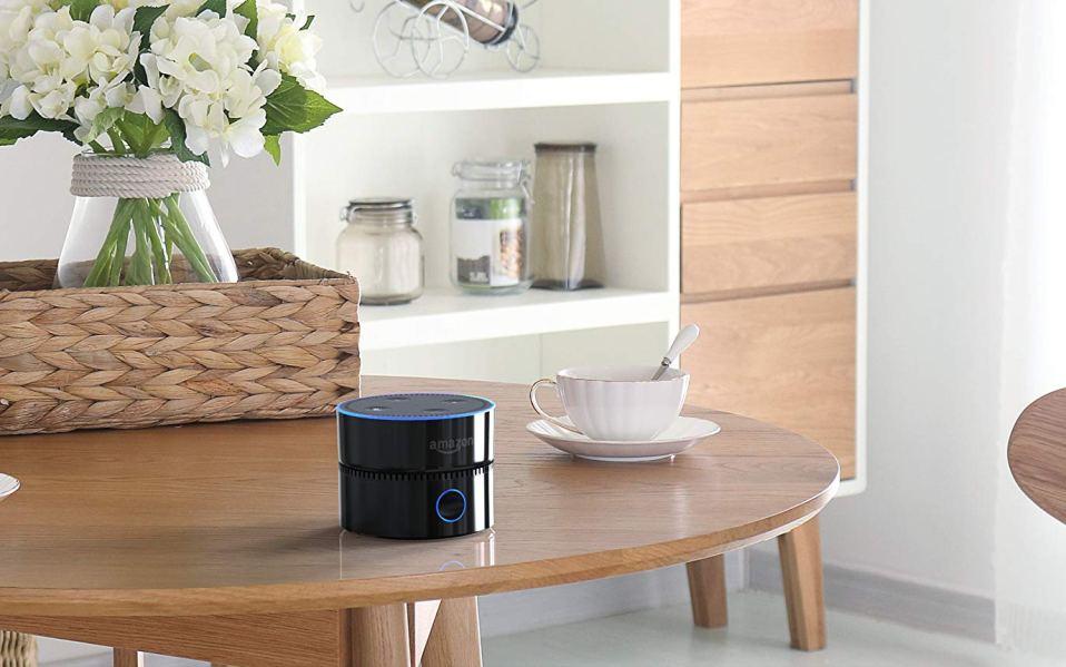 echo dot portable speaker