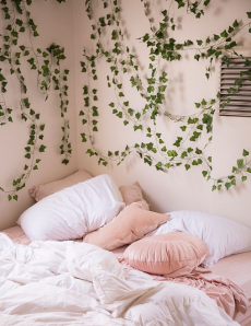 wall decor vines urban outfitters