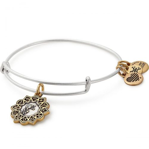 Alex + Ani Two Tone Charm Bangle