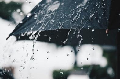 reprel umbrella