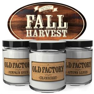 Scented Candles - Fall Harvest