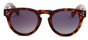 Tortoise Shell Sunglasses Wayfarer