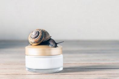 snail skin care