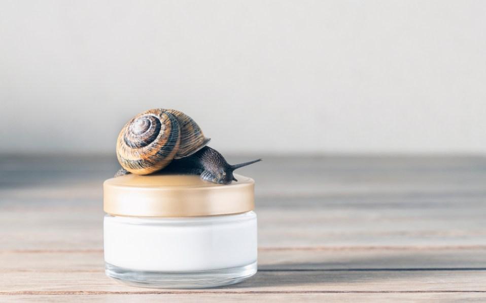 snail mucin skin care benefits