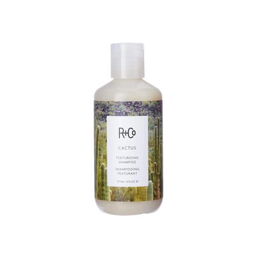 R+Co Cactus texturizing shampoo, 6 fluiid ounces; best shampoos for men