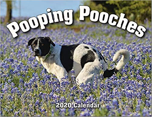 dog calendar pooping