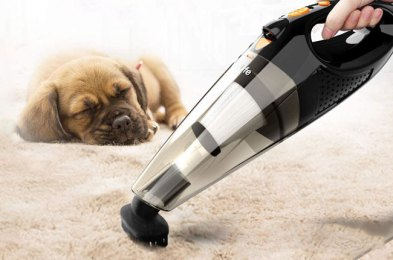 the 9 best vacuums for pet hair