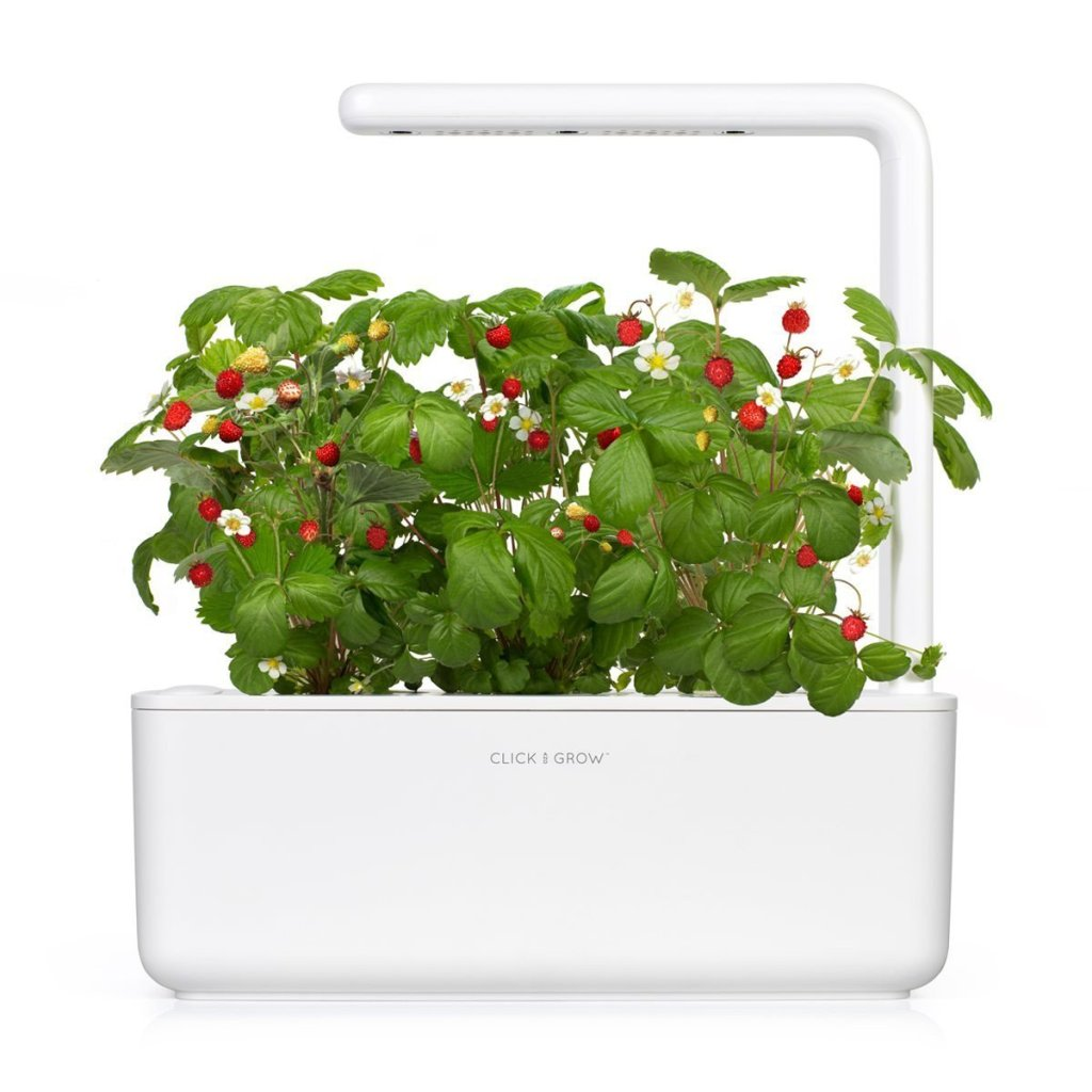 Smart Garden 3 Self Watering Indoor Garden