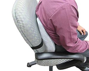 Centrus Memory Foam Lumbar Cushion