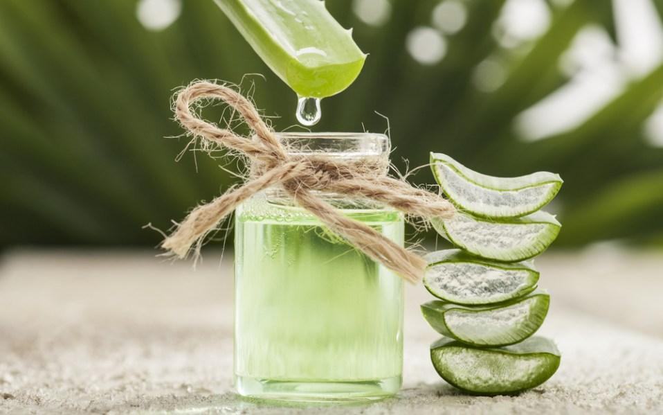 aloe for skin care