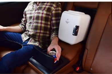 in car mini fridge cooler
