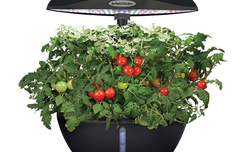 AeroGarden Classic 6 smart countertop garden