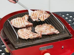 portable pizza oven grill firepod