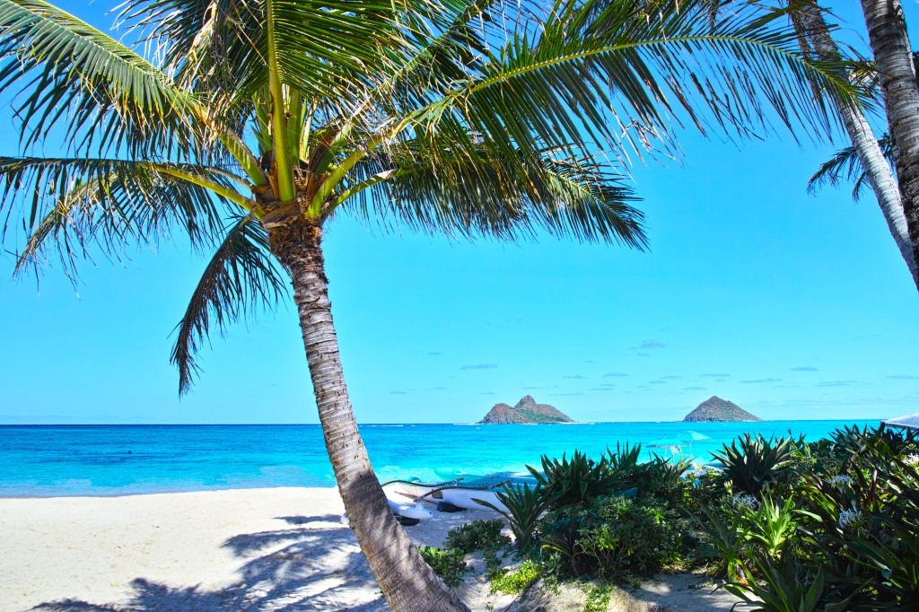 most romantic place to propose lanikai beach hawaii