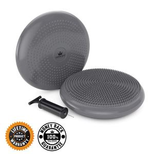 gray stability disc