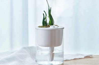 perk up your workspace with this $28 desktop humidifier and planter