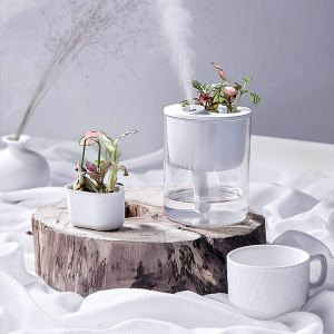 cool mist humidifier ultrasonic planter
