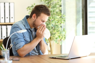 smart air purifiers keep allergies and sinuses at bay this spring