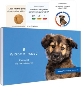 wisdom panel dog dna kit