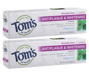 Fluoride-Free Antiplaque Toothpaste