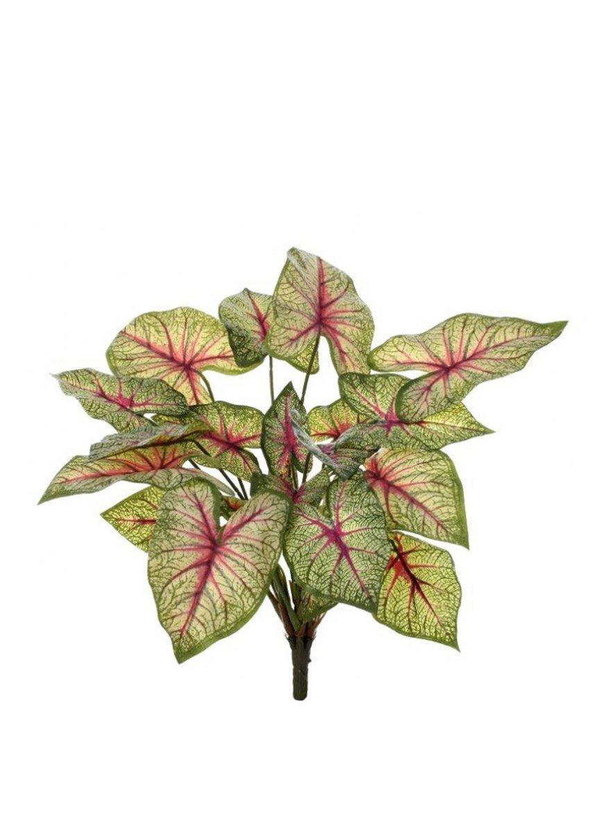 fake caladium plant