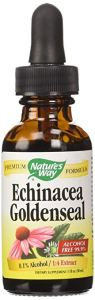 how to boost immune system echinacea goldenseal