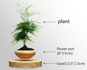 indoor plant pot levitating