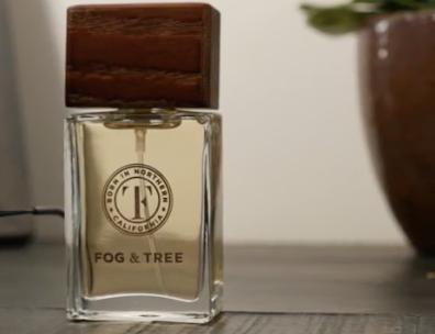 fog and tree cannabis fragrance