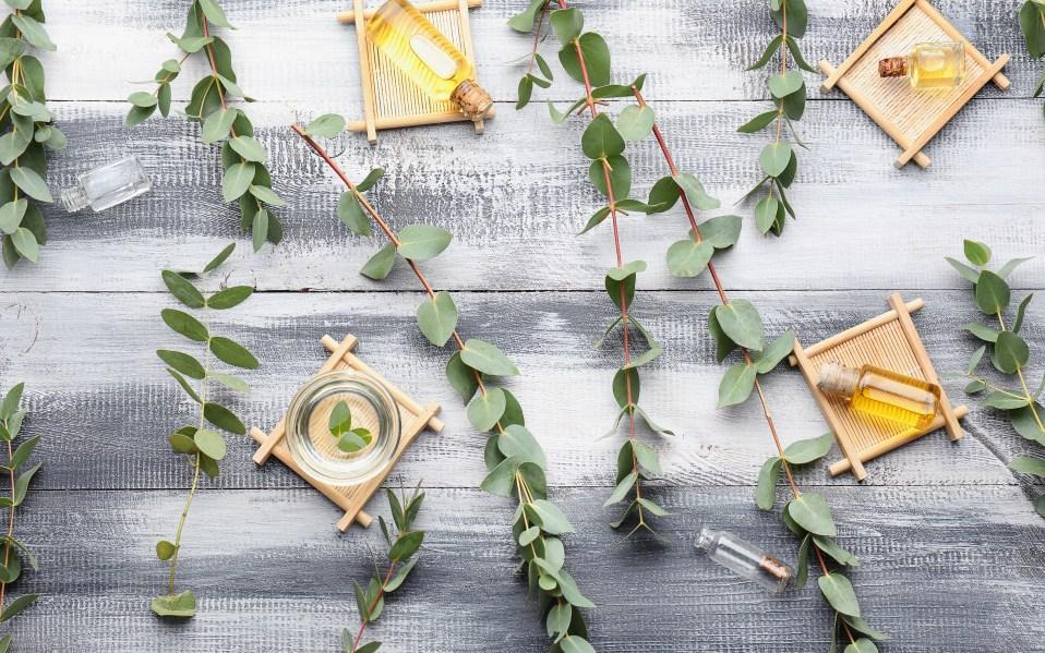 how to use eucalyptus oil
