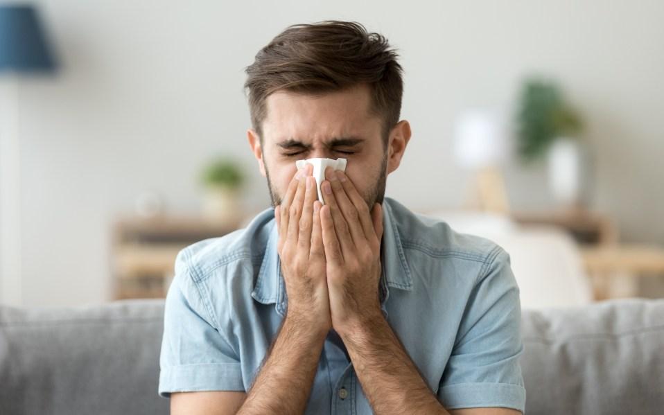 allergy season symptoms cleaning