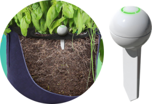 smart garden seedsheets guru sensor