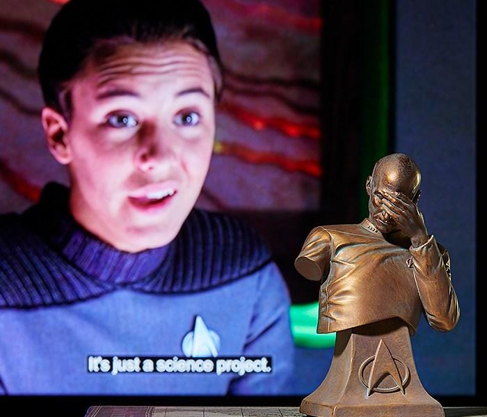 captain Picard bust face palm