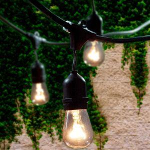 string lights lemontec