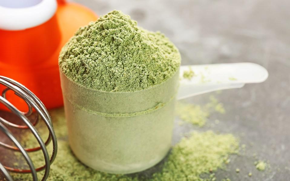 best superfood powders