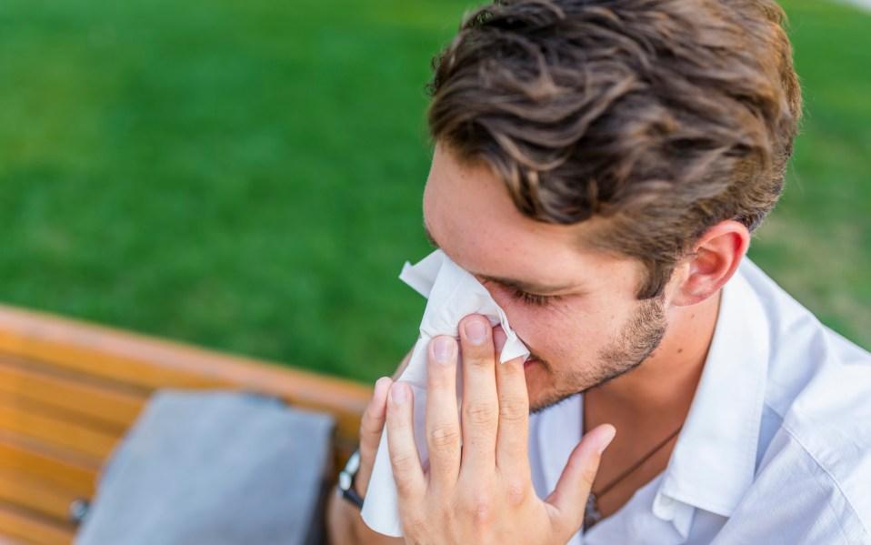 best essential oils allergies