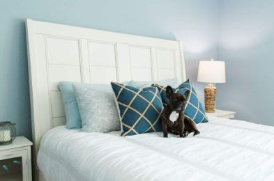 Sylvania-Home-Lighting-Soft-White-LED-Light-Bulbs-Amazon-1
