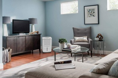 keep your home mold and allergen free with the best dehumidifiers on amazon