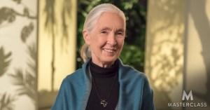 Dr. Jane Goodall MasterClass