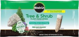best fertilizer miracle gro tree shrub