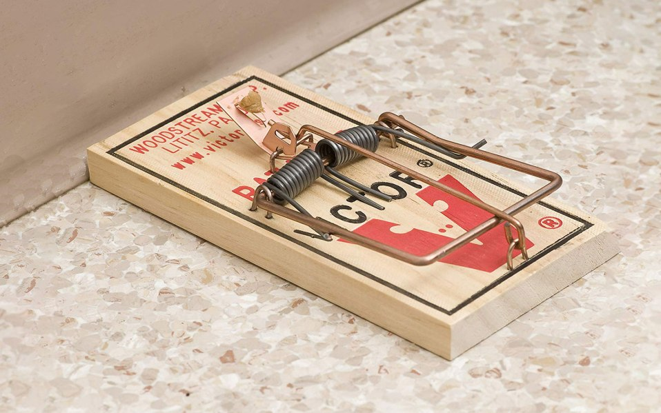a traditional victor rat trap on