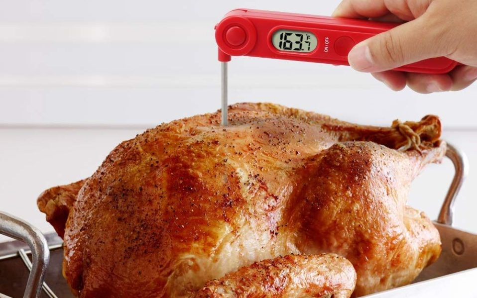 thermopro meat thermometer featured image