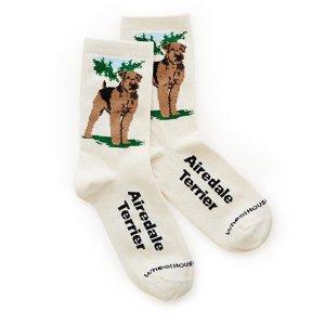 Dog Socks gift