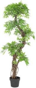 Vert Lifestyle Luxury Japanese Fruticosa Tree