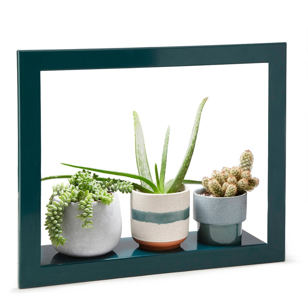 Growlight Frame Shelf - Best Christmas Gift