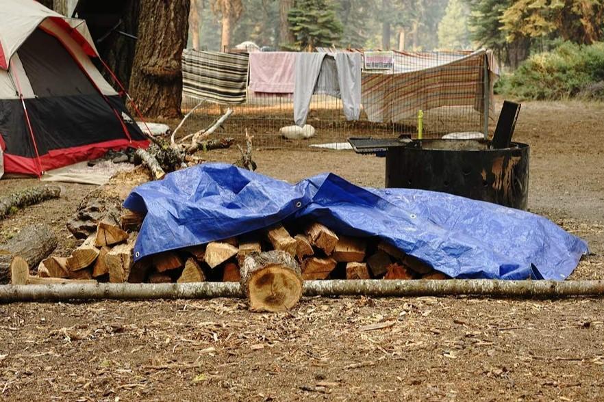 Best tarps camping