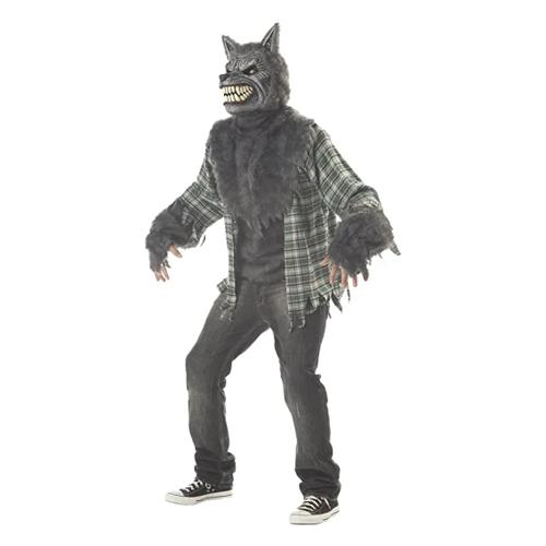 halloween costumes for men california costumes